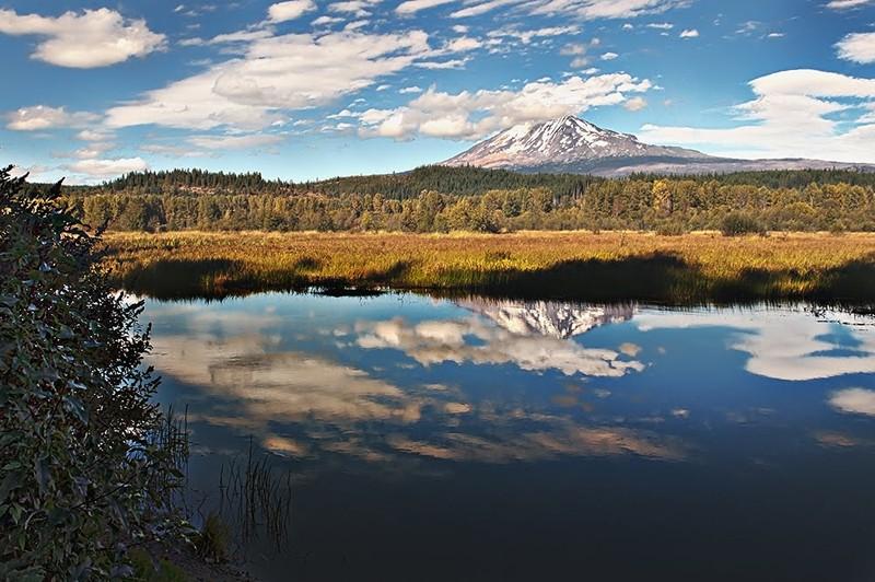 L'arc volcanique des Cascades (sujet participatif) - Page 2 Trout_10