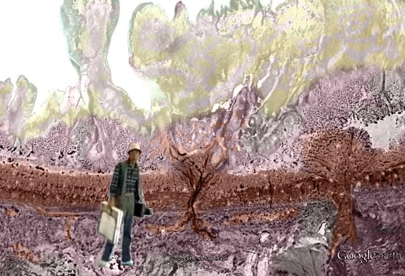 Van Gogh et Kurosawa [Image truquée de Google Earth]  Vg0310
