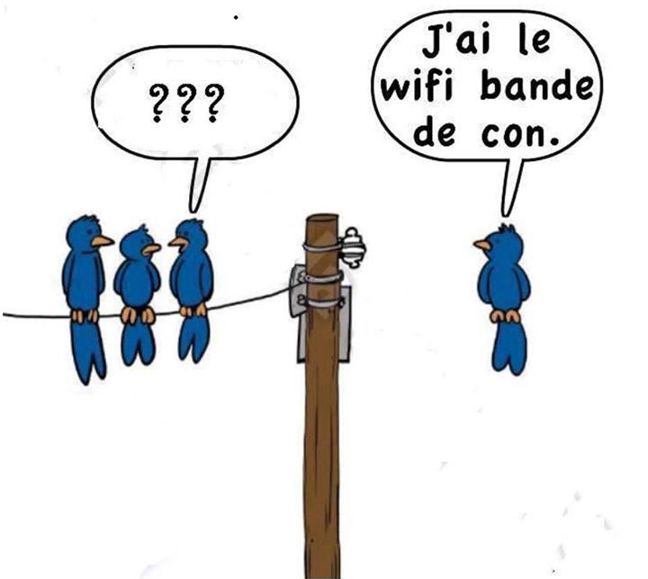 Humour, blagues, infos décalées (Gorafi etc...), photos et vidéos délire ! - Page 3 00002310