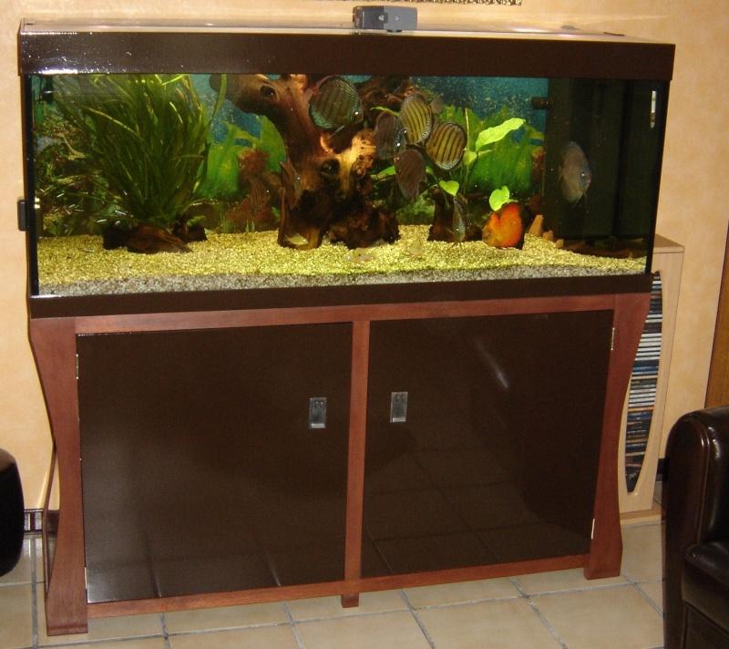 vend aquarium 400 litre avec mauble unique Dsc00710