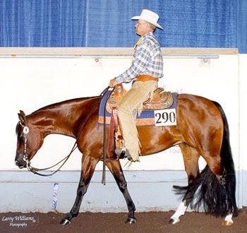 Equitation Western ou Classique? Photo_12