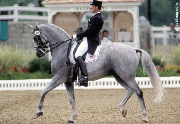 Equitation Western ou Classique? Photo_13