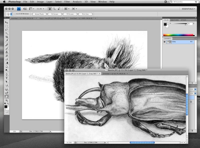Adobe photoshop cs4 extenden edition Ps_cs410