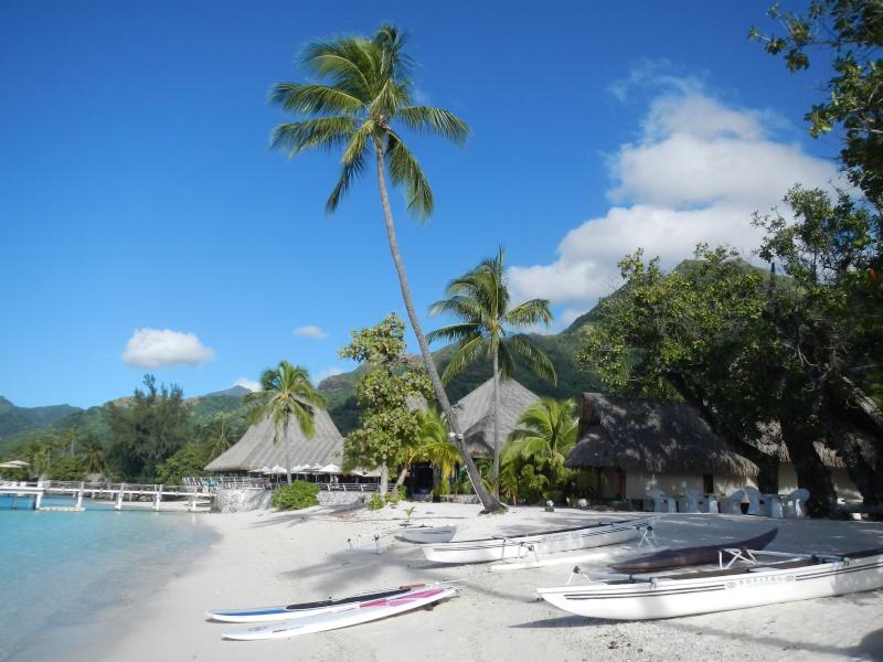 Furax file en Polynésie en Juin 2015 - Page 3 Dscn3510
