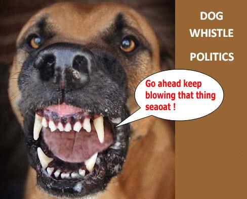 South Carolina Senate speaks loud and clear Dogwhi10