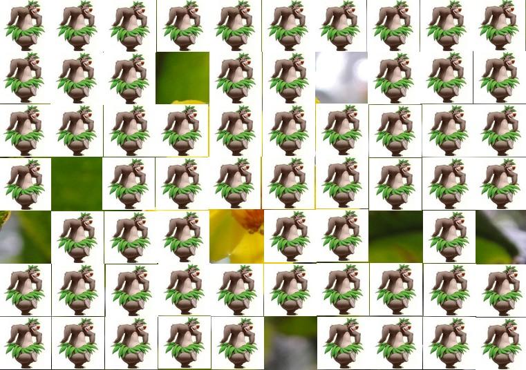 la fleur de Martin du 13 juin trouvée par Martine Fleur10
