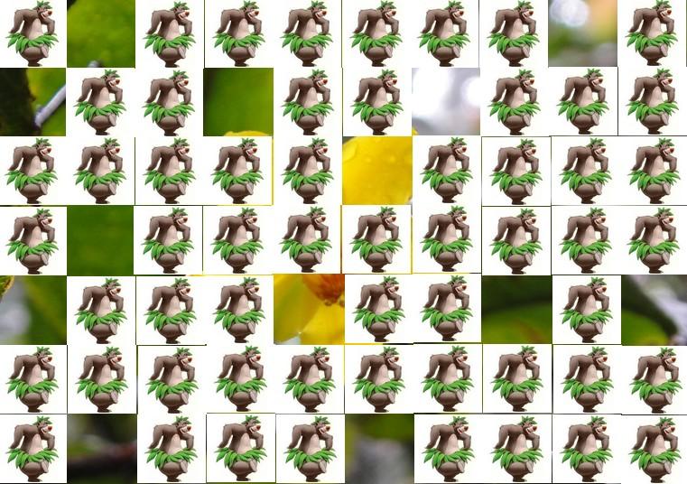 la fleur de Martin du 13 juin trouvée par Martine Fleur11