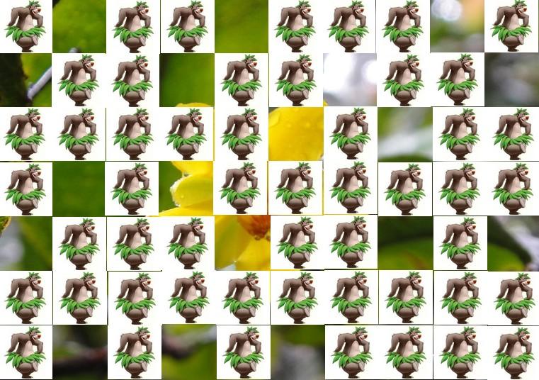 la fleur de Martin du 13 juin trouvée par Martine Fleur12