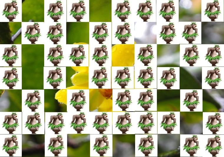 la fleur de Martin du 13 juin trouvée par Martine Fleur13