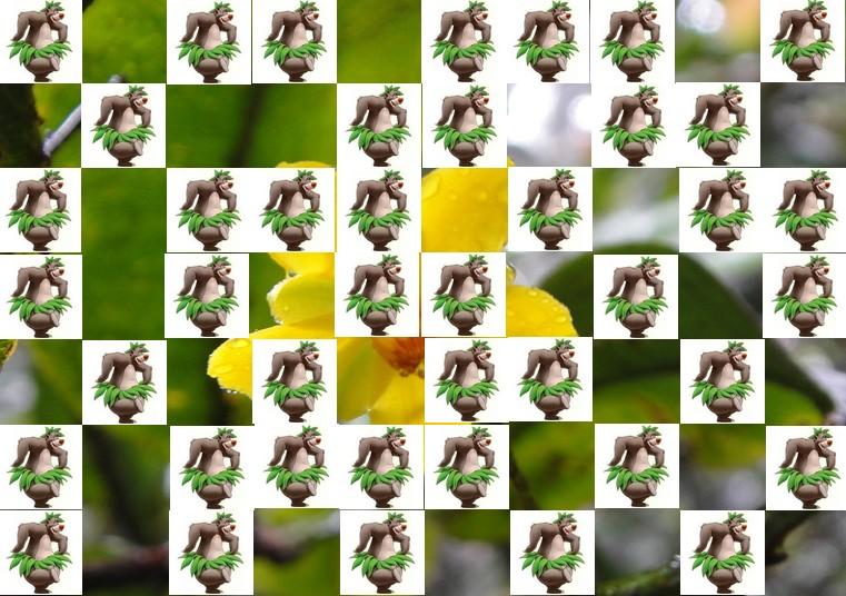 la fleur de Martin du 13 juin trouvée par Martine - Page 2 Fleur14