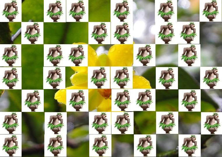 la fleur de Martin du 13 juin trouvée par Martine - Page 2 Fleur15