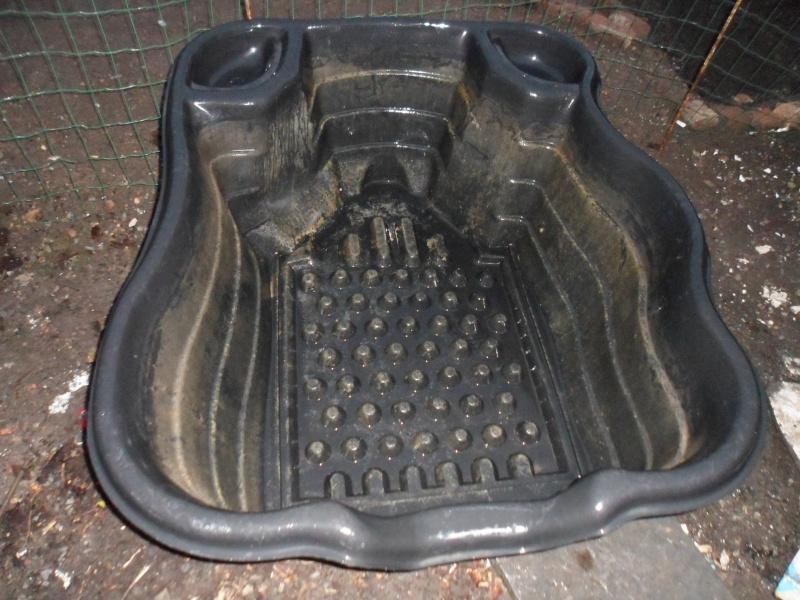 Construction de mon bassin de 5-6 M³ Sam_0613