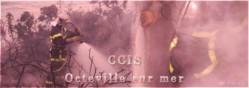 CISV Octeville sur mer