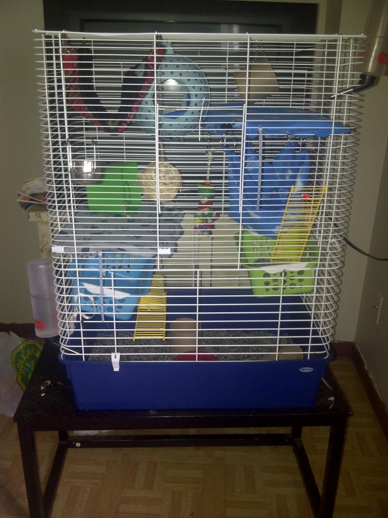 Extension de cage  0021010