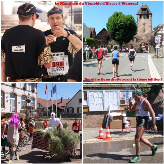 11 ème édition du Marathon du Vignoble d'Alsace et son passage à Wangen le 21 juin 2015 11429711