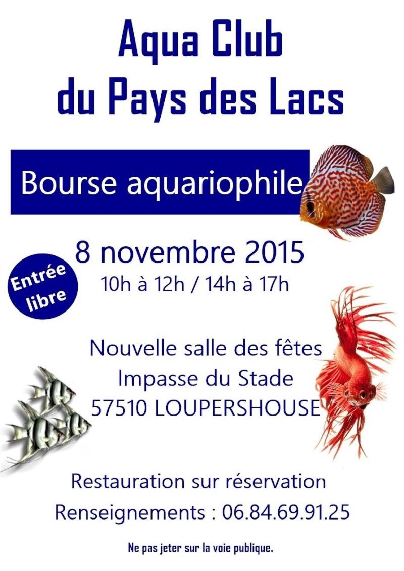 Bourse à Loupershouse (57) - 08 novembre 2015 Image14