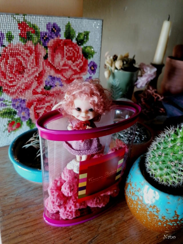 Ma famille de BJD (Souldoll, Fairyland, Raccoon doll) bis - Page 48 50394010