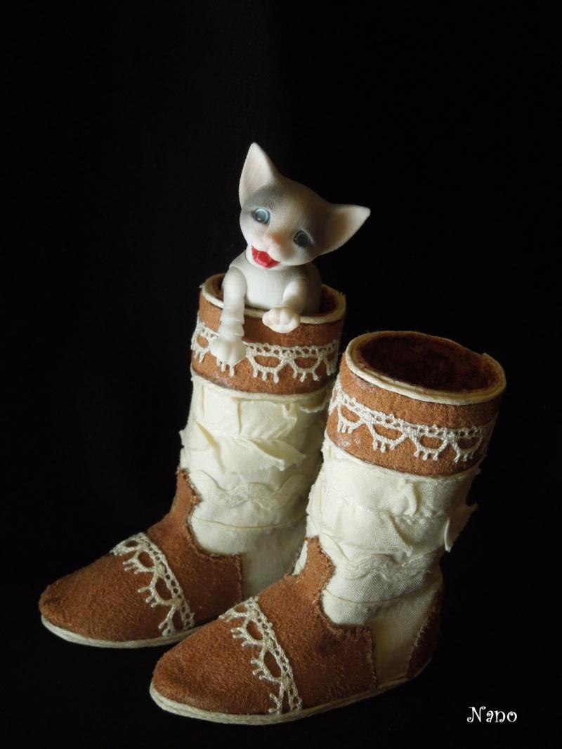 Ma petite famille de BJD (Souldoll, Fairyland, Raccoon doll) - Page 39 Dscn9517