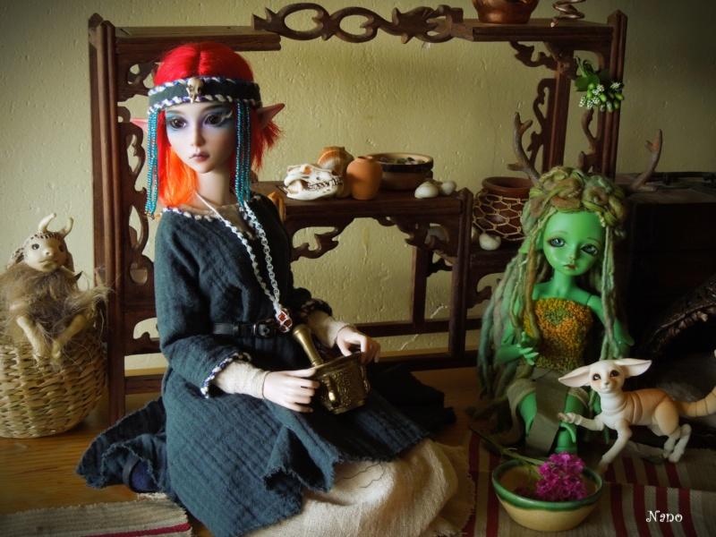 Ma famille de BJD (Souldoll, Fairyland, Raccoon doll) bis - Page 44 Dscn9847