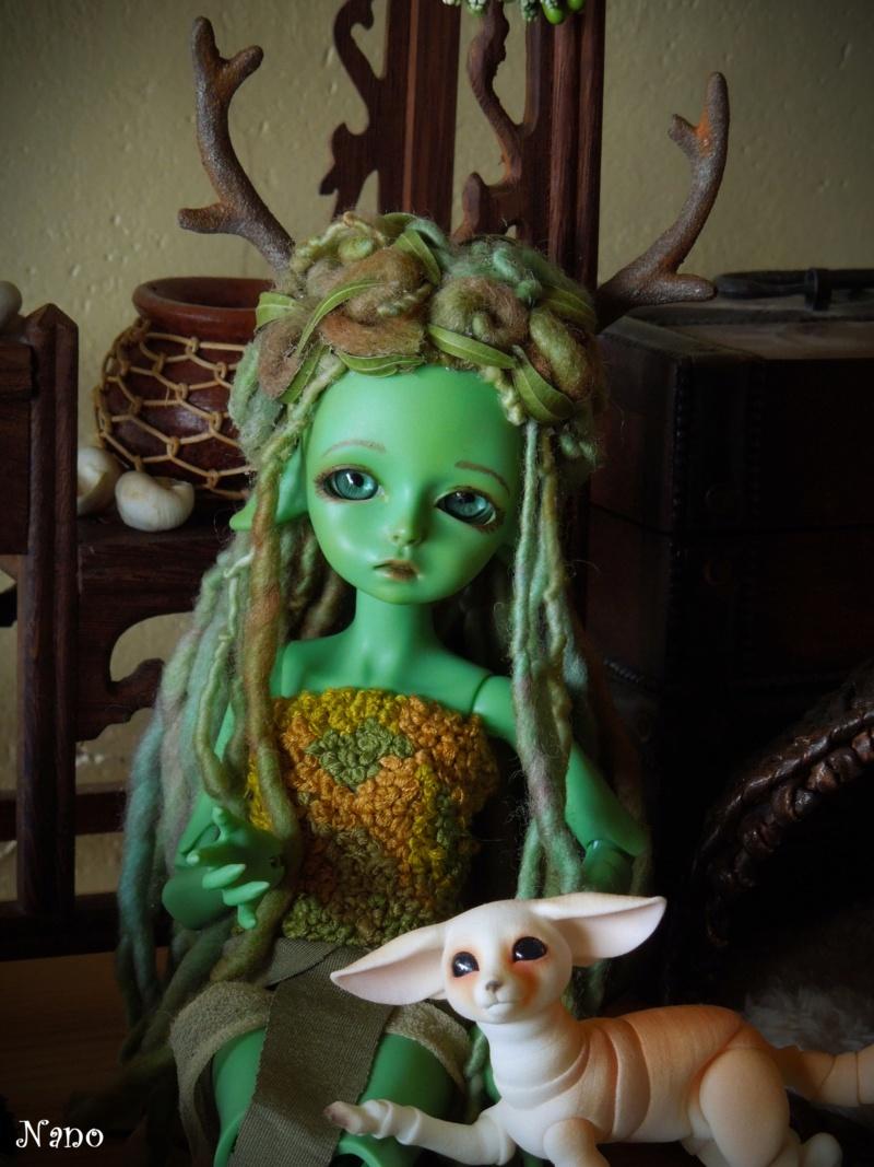 Ma famille de BJD (Souldoll, Fairyland, Raccoon doll) bis - Page 44 Dscn9849