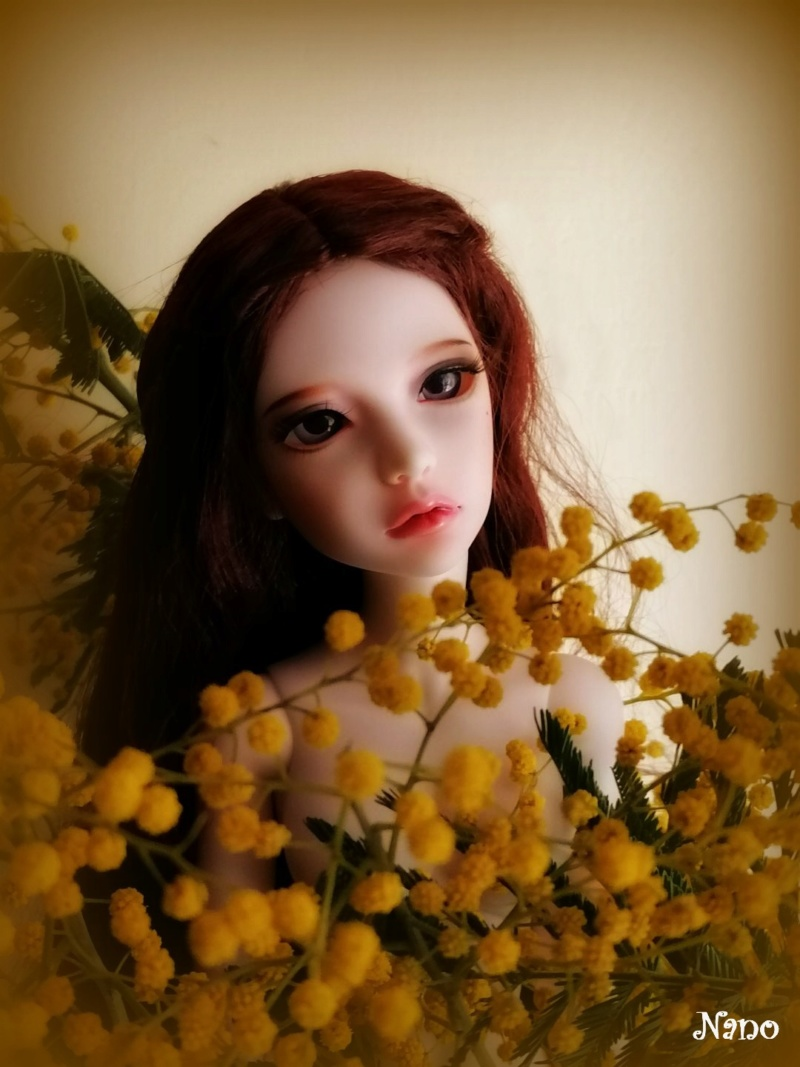 Ma famille de BJD (Souldoll, Fairyland, Raccoon doll) bis - Page 39 Thumbn10