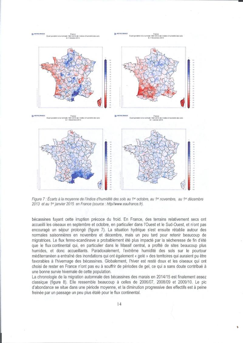Réseau Bécassines, Bilan 2014/2015 Rappor40