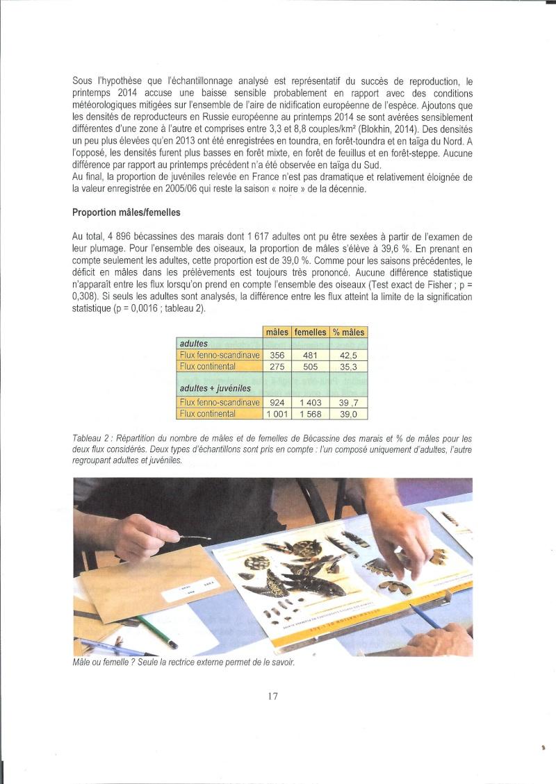 Réseau Bécassines, Bilan 2014/2015 Rappor43