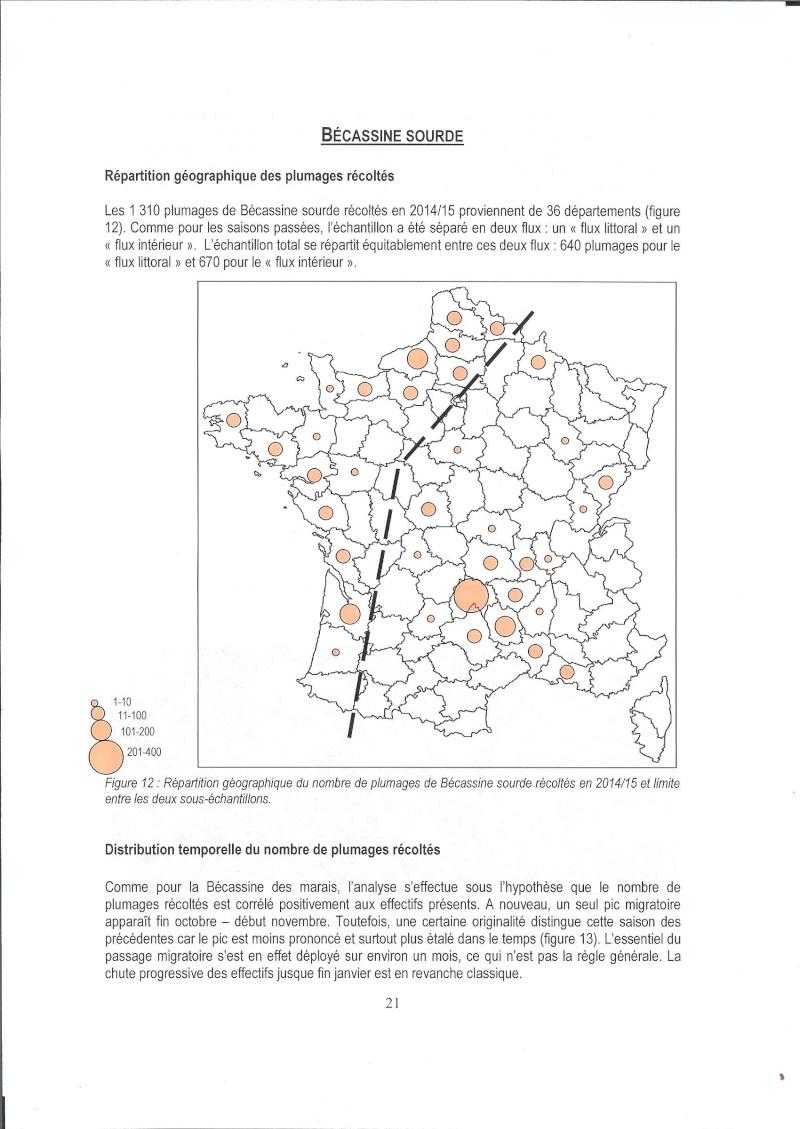 Réseau Bécassines, Bilan 2014/2015 Rappor49