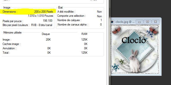 Pourquoi je peux télécharger un avatar de 200x200 alors que la taille est limitée à 150 pixels de large? 3-avat10