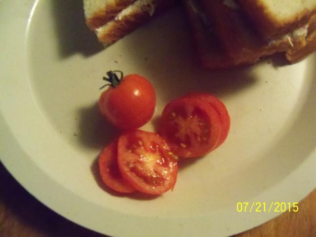 Tomato Tuesday 2015 - Page 10 07-21-10