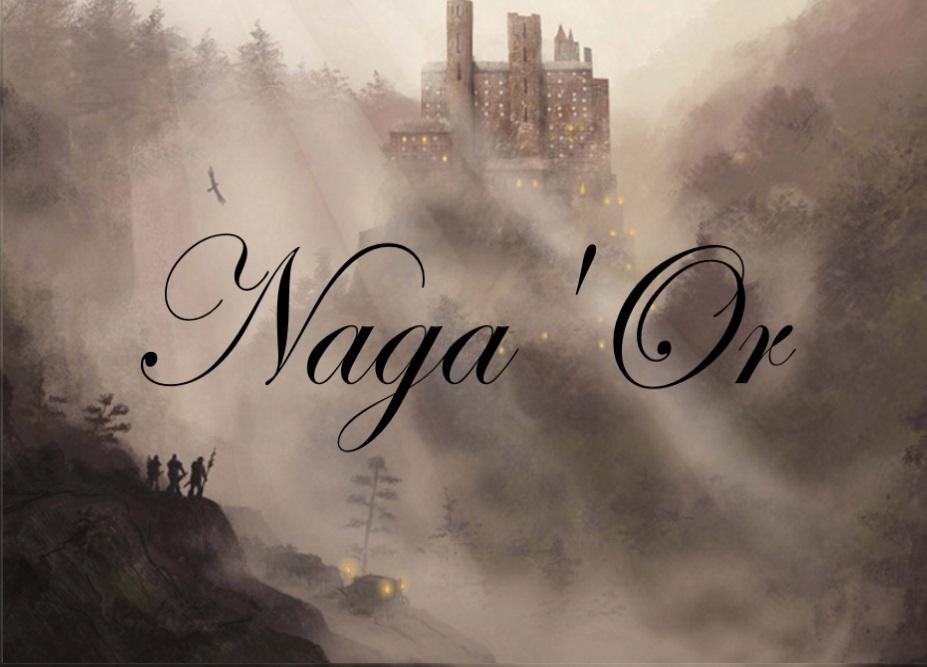 Les Chroniques des Terres de Naga'Or