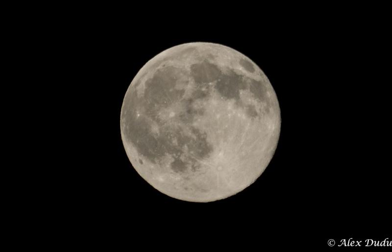 Pleine lune du 2 juin!!! P6030212
