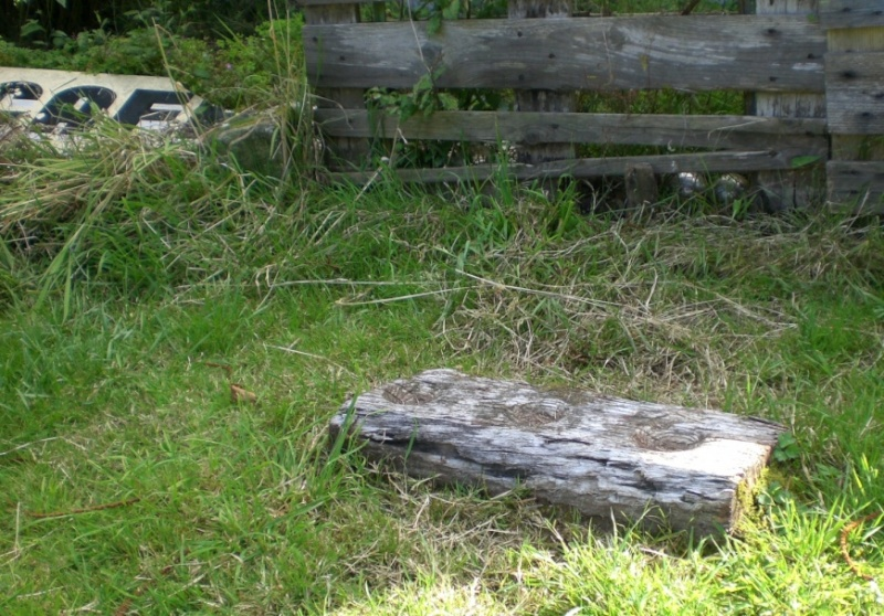 Scottish Story 1: Rock art sur le site préhistorique de Kilmartin en Ecosse. 870px-10