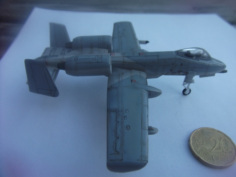 A-10 Thunderbolt II Dscf3841