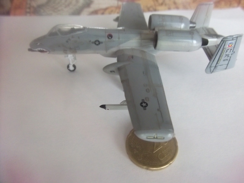 A-10 Thunderbolt II Dscf3929