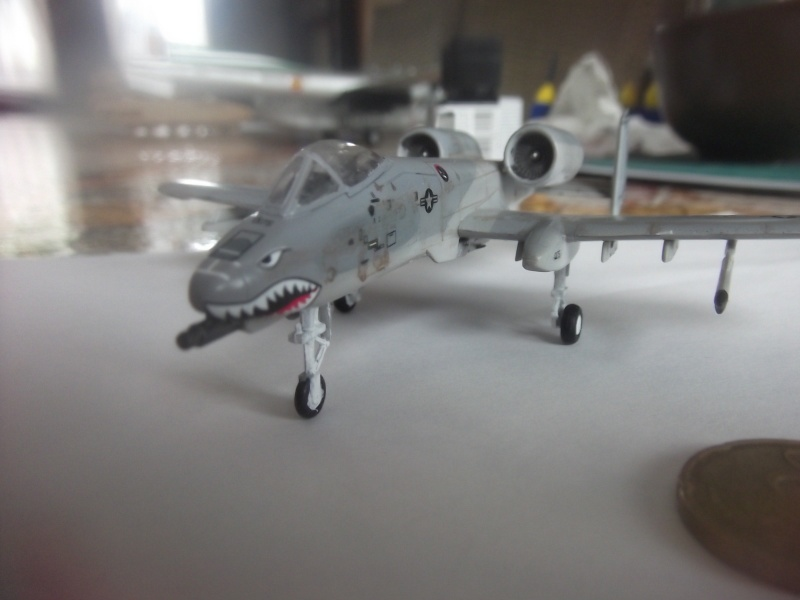 A-10 Thunderbolt II Dscf3932