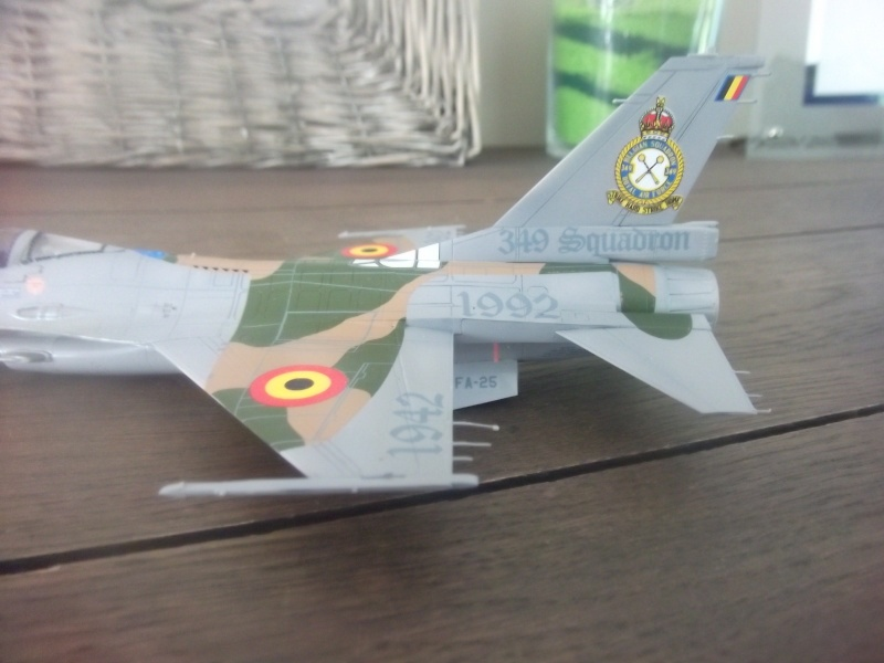 F-16A 50 ans 349° escadrille  Dscf3957