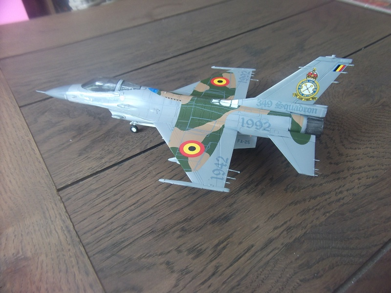 F-16A 50 ans 349° escadrille  Dscf3961