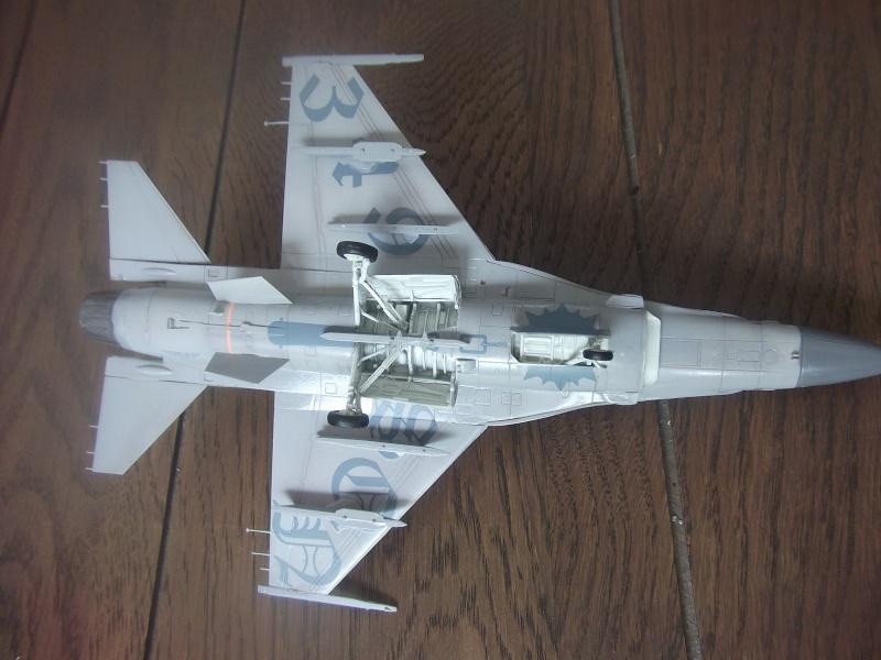 F-16A 50 ans 349° escadrille  Dscf3964