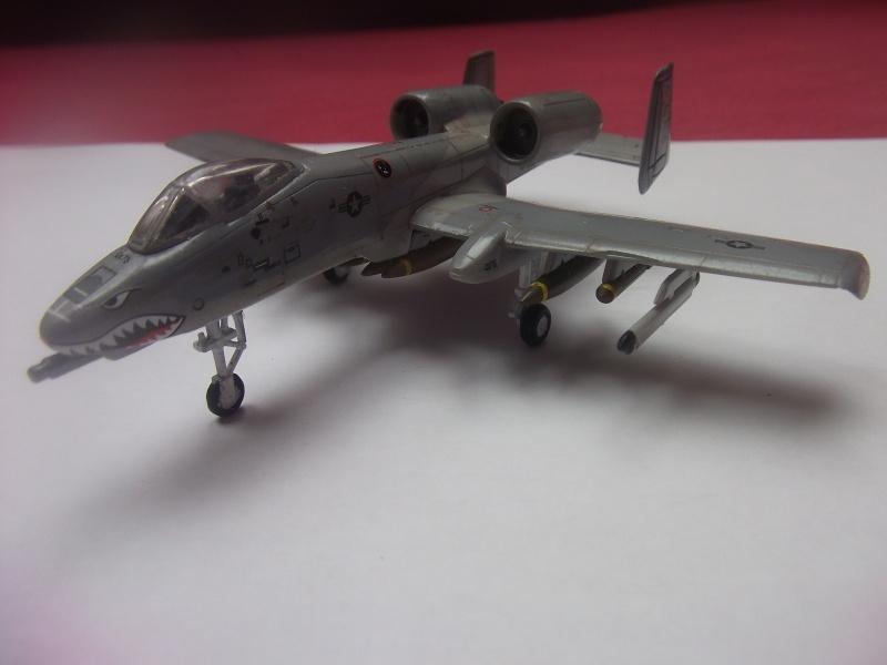 A-10 Thunderbolt II Dscf3978