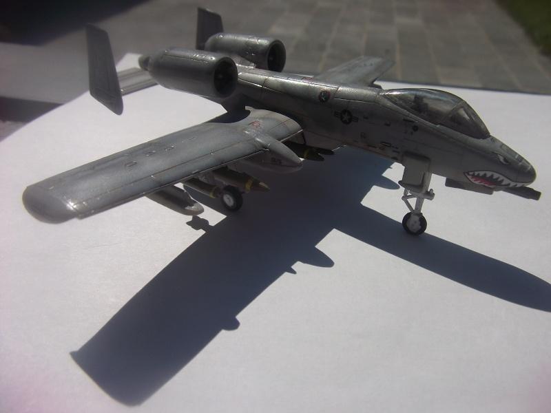 A-10 Thunderbolt II Dscf4029