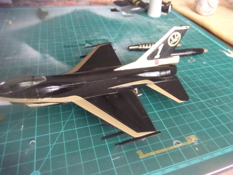 F-16A 80 ans 1° escadrille  Dscf4051