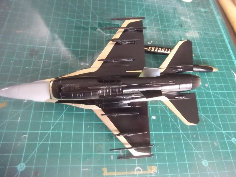 F-16A 80 ans 1° escadrille  Dscf4053
