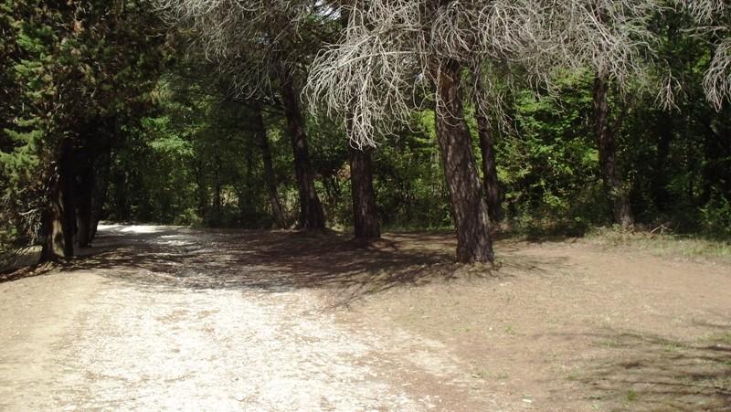 Le lac Dscf5650