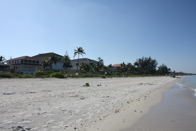 CR de 2 semaines en Floride ! Img_8511