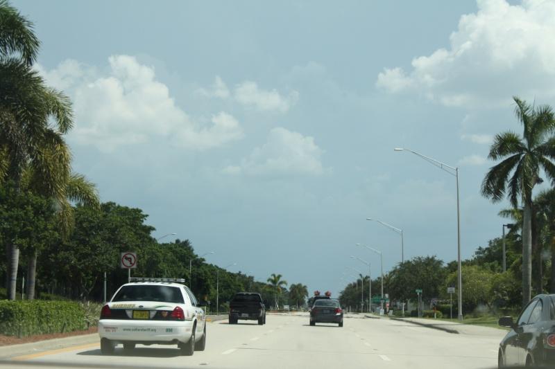 CR de 2 semaines en Floride ! Img_8513