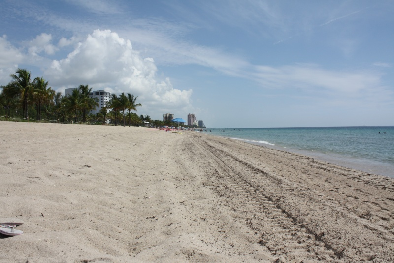 CR de 2 semaines en Floride ! Img_8912