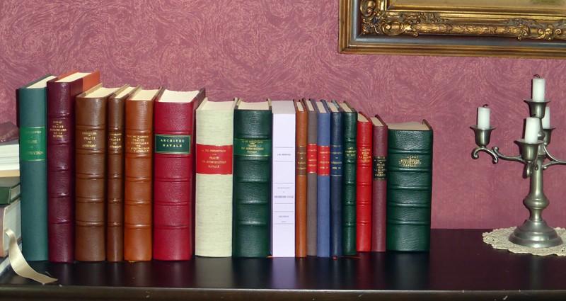 Les Editions du Petit Vincent P1020011