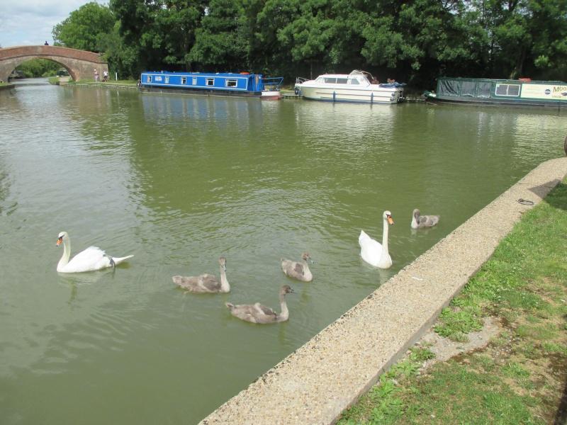 Foxton Locks Nr. Market Harborough 01411