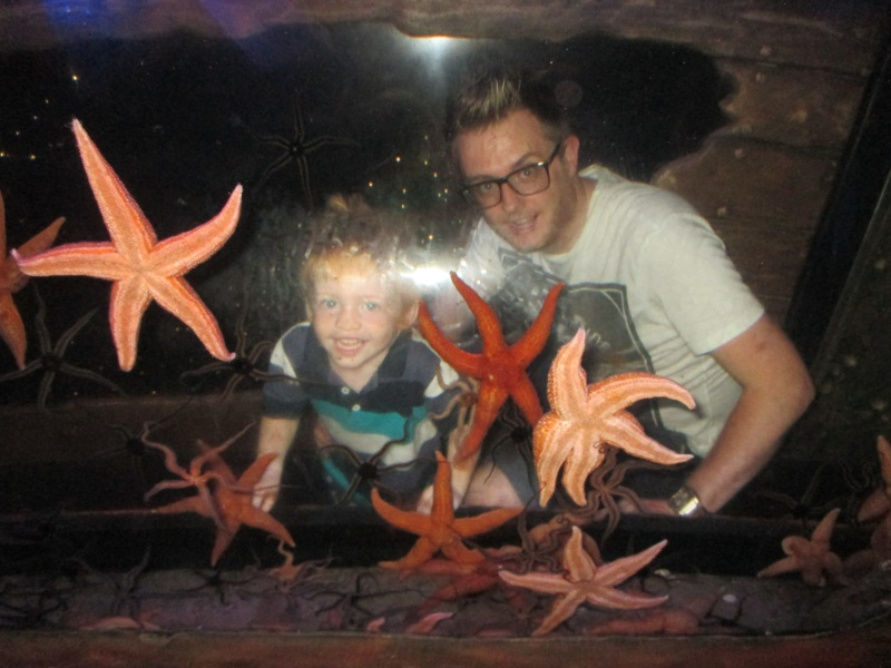 Sea Life Centre Gt. Yarmouth 06111